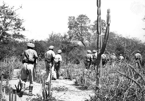 http://wartime.narod.ru/Bolivian_Patrol_in_Chaco.jpg